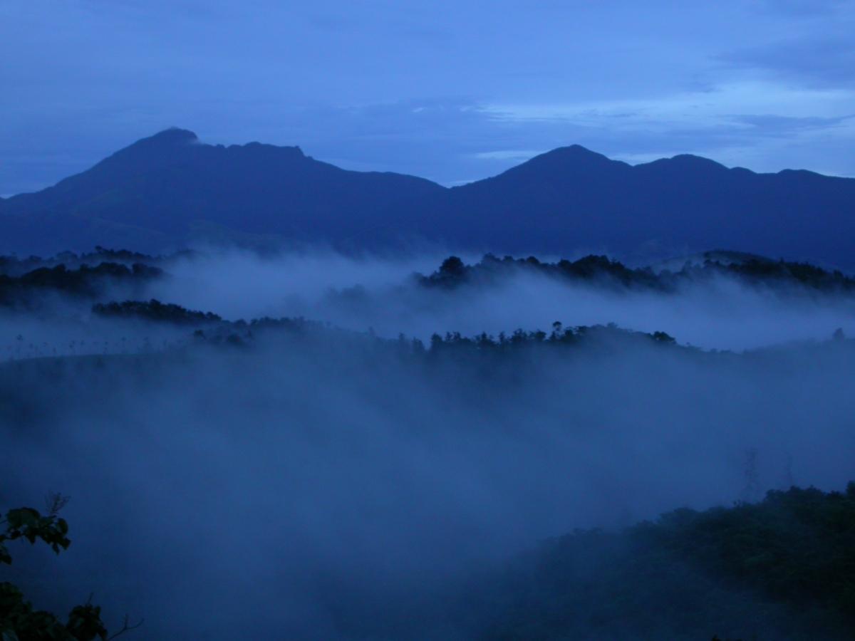 Mist over local neighbourhood and Banasura